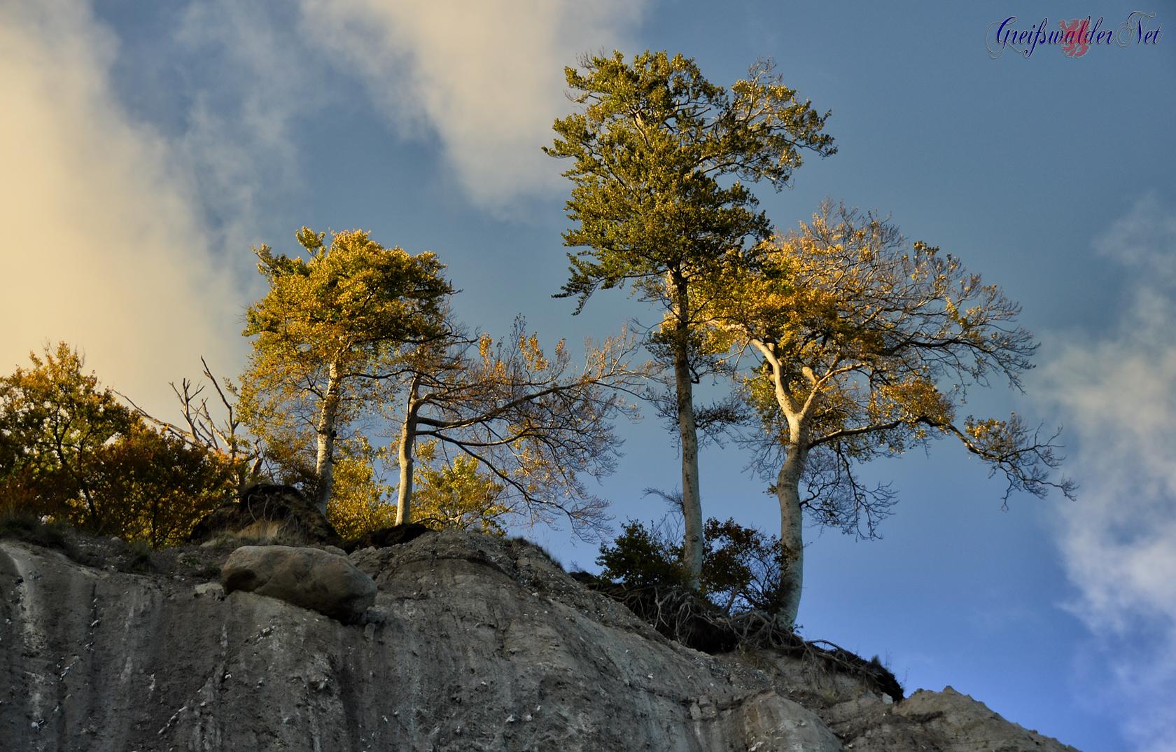 Herbst auf der Insel Rügen