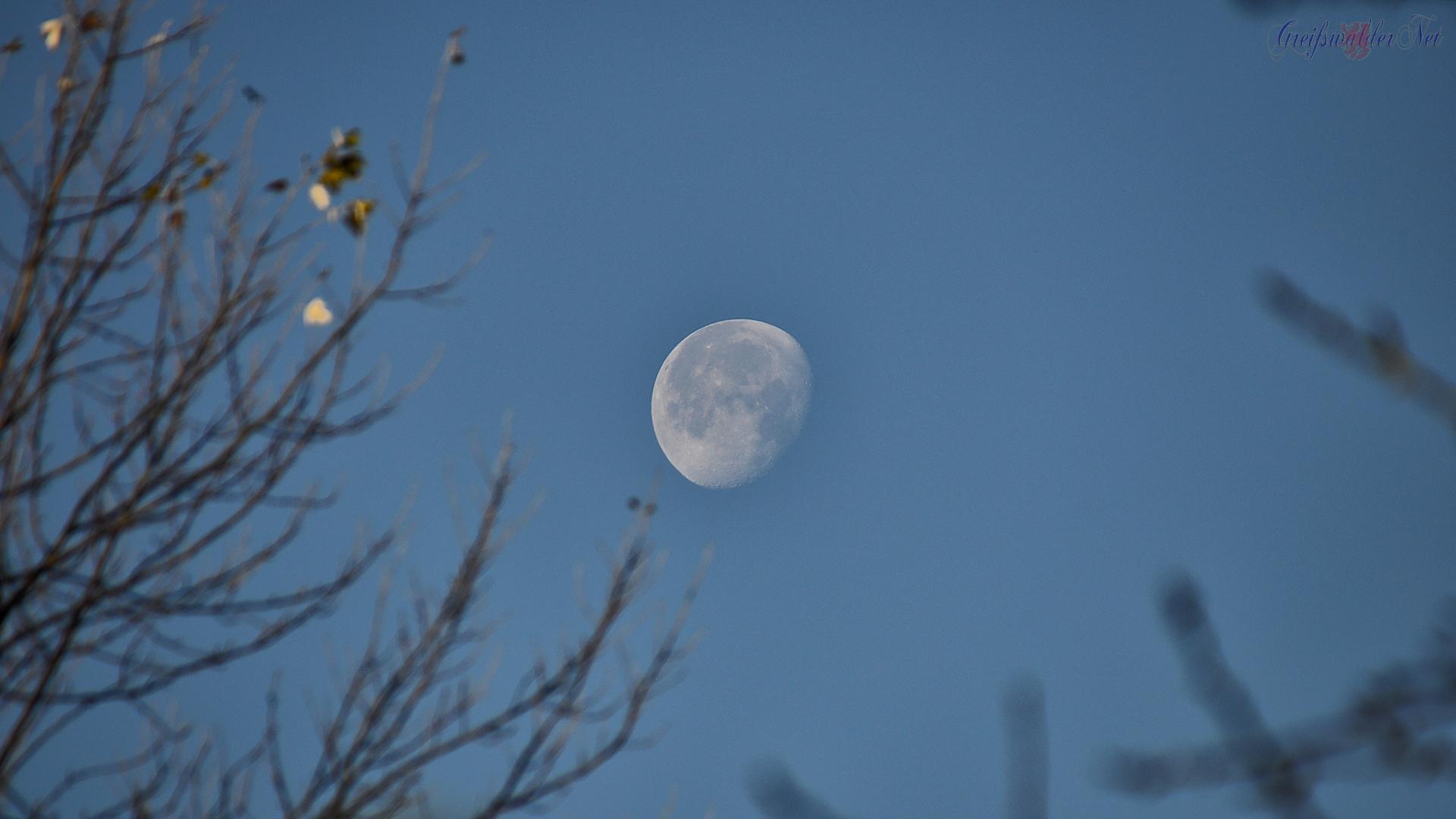 Mond über Greifswald