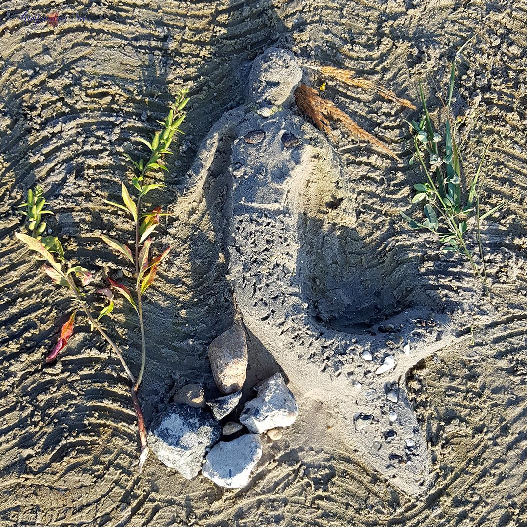 Strand-Sand-Nixe