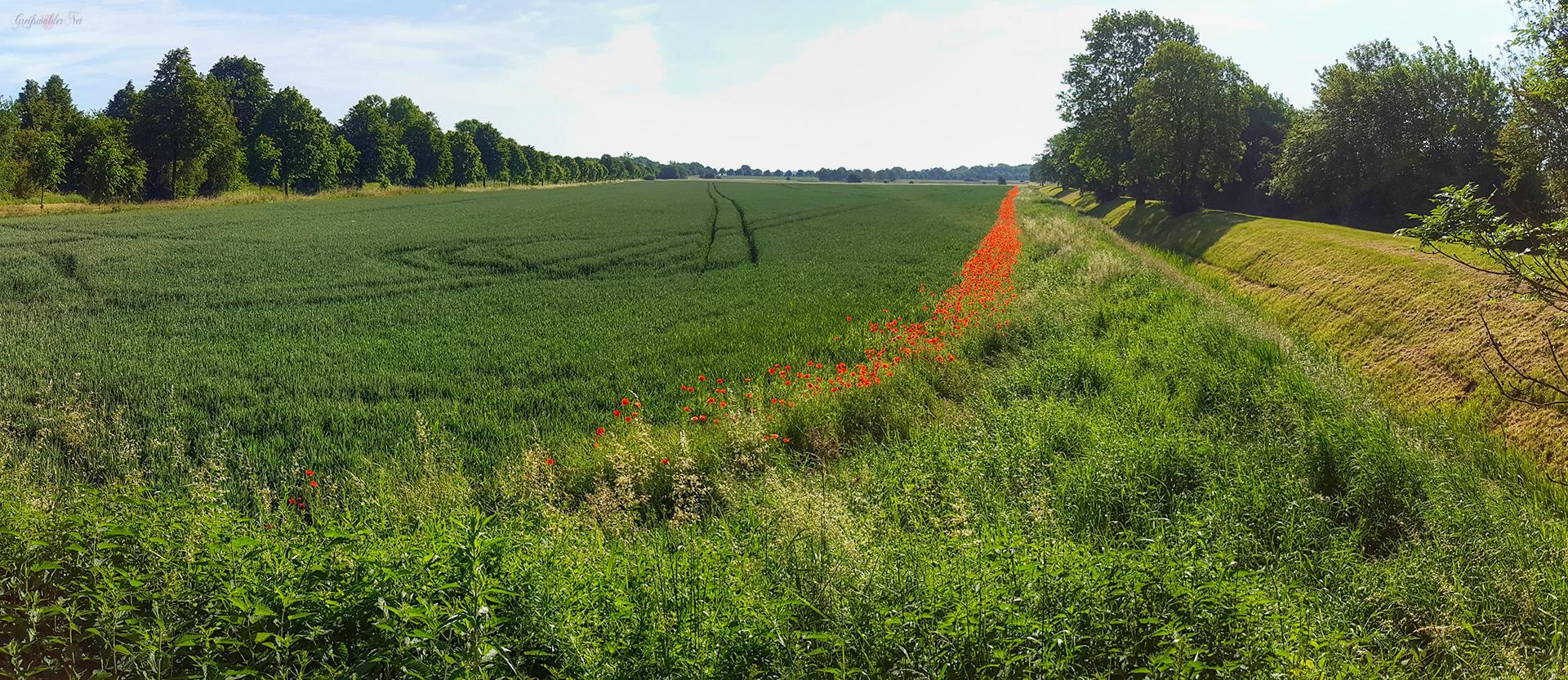 Landwirtschaft und Natur