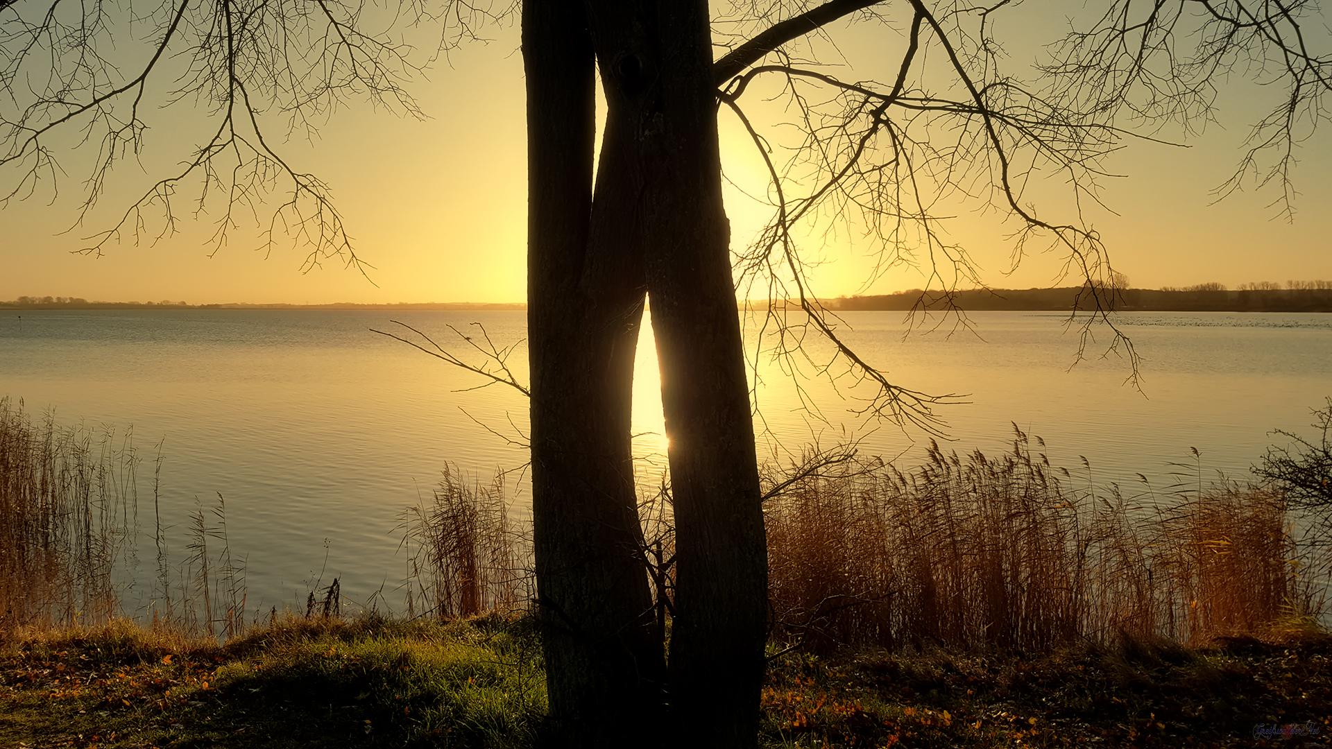 Goldene Stunde an der Dänischen Wiek in Greifswald-Wieck