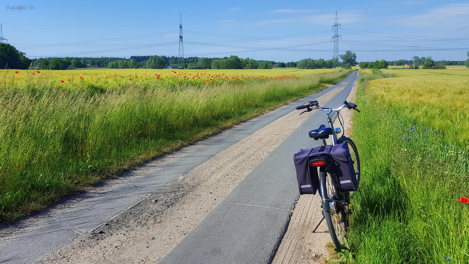 Radtour bei sommerlichen Temperaturen