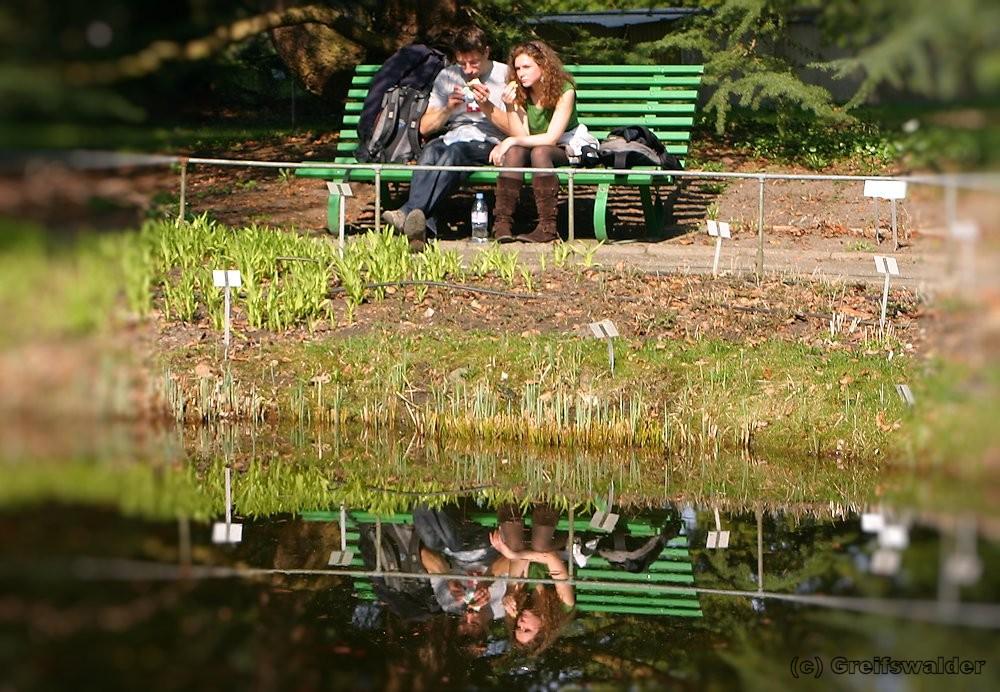 Im Arboretum