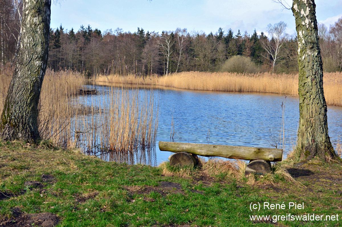 Teich im Wald bei Weitenhagen