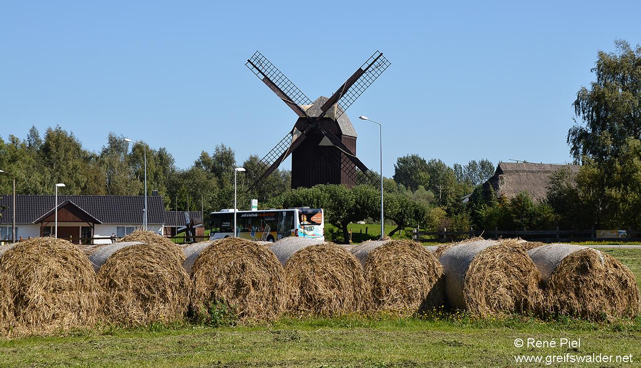 An der Mühle in Greifswald-Eldena