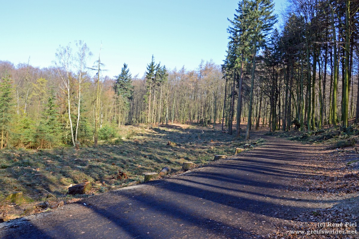 Wanderweg zum Königsstuhl