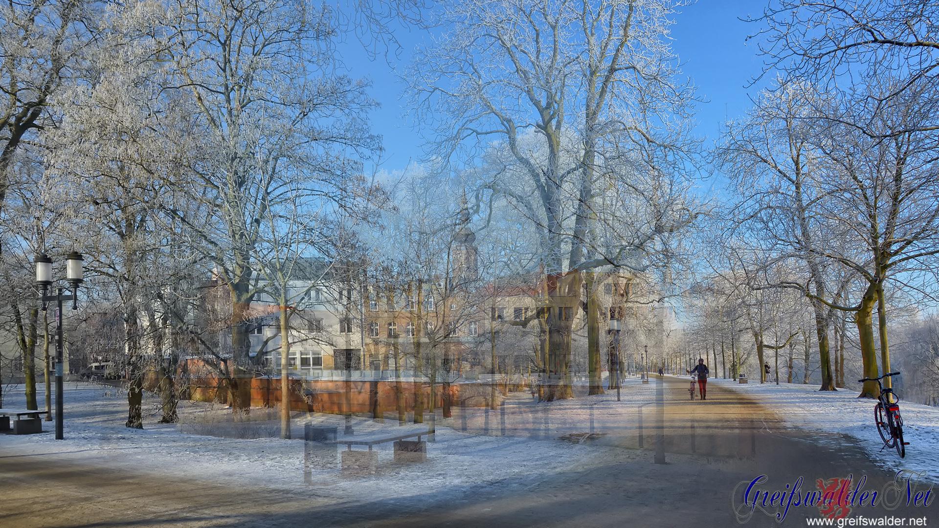 Wintertraum in Greifswald